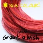 Grant a Wish Saran